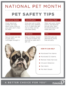 Pet Safety Tips Download